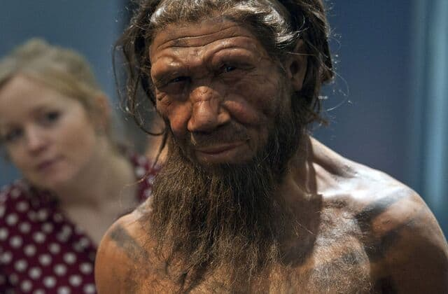 Experts find evidence of ancient war that lasted 100,000 years