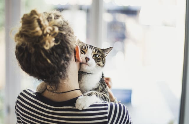 Will Your Cat Suffer From Separation Anxiety?