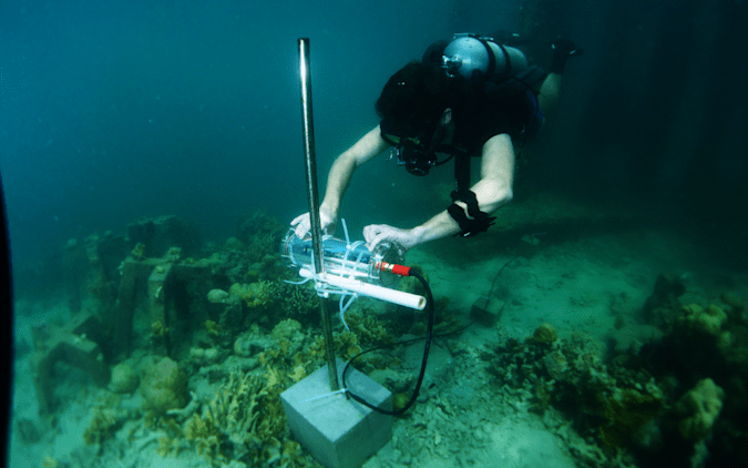 A diver installs a CORaiL AI-powered video camera.