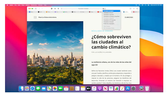 macOS Big Sur Safari translation