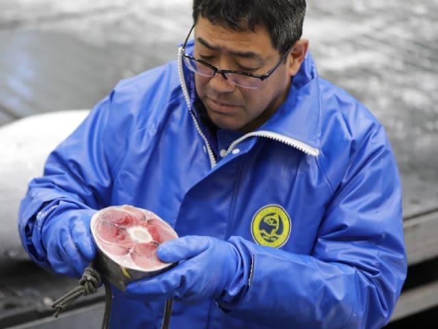 Tuna expert