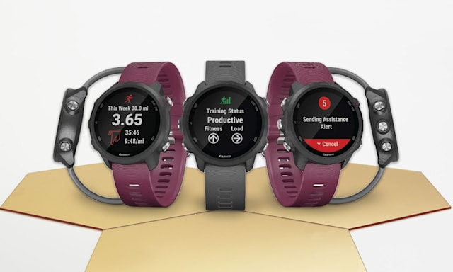 Holiday Gift Guide: Garmin Forerunner 245