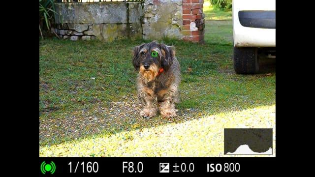 Exemples d'images d'appareil photo sans miroir Sony A7C