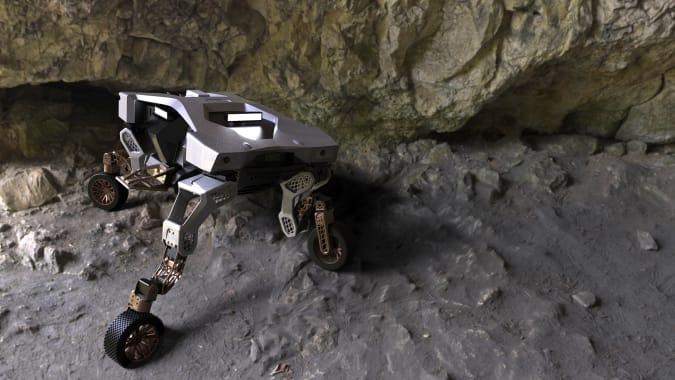 TIGER X-1