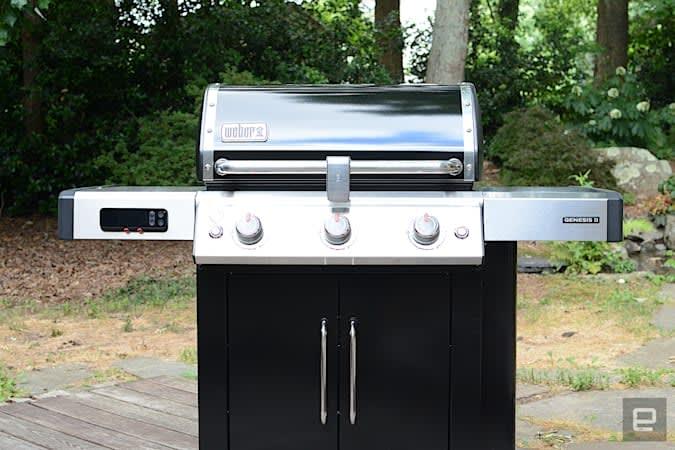 Weber Genesis II EX-315
