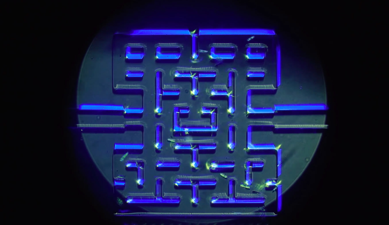 researchers create a microscopic game of pac man