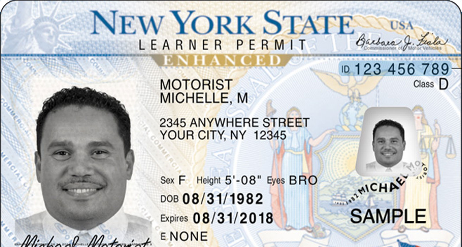 How Old To Get A Car Drivers Permit In Nys