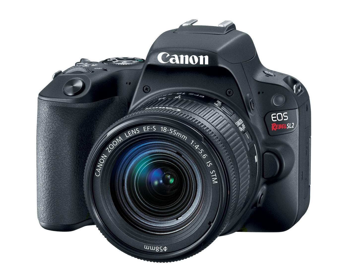 Canon\'s lightweight Rebel SL2 has a much-improved sensor