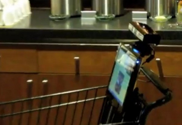 Whole Foods Kinect Shopping Cart