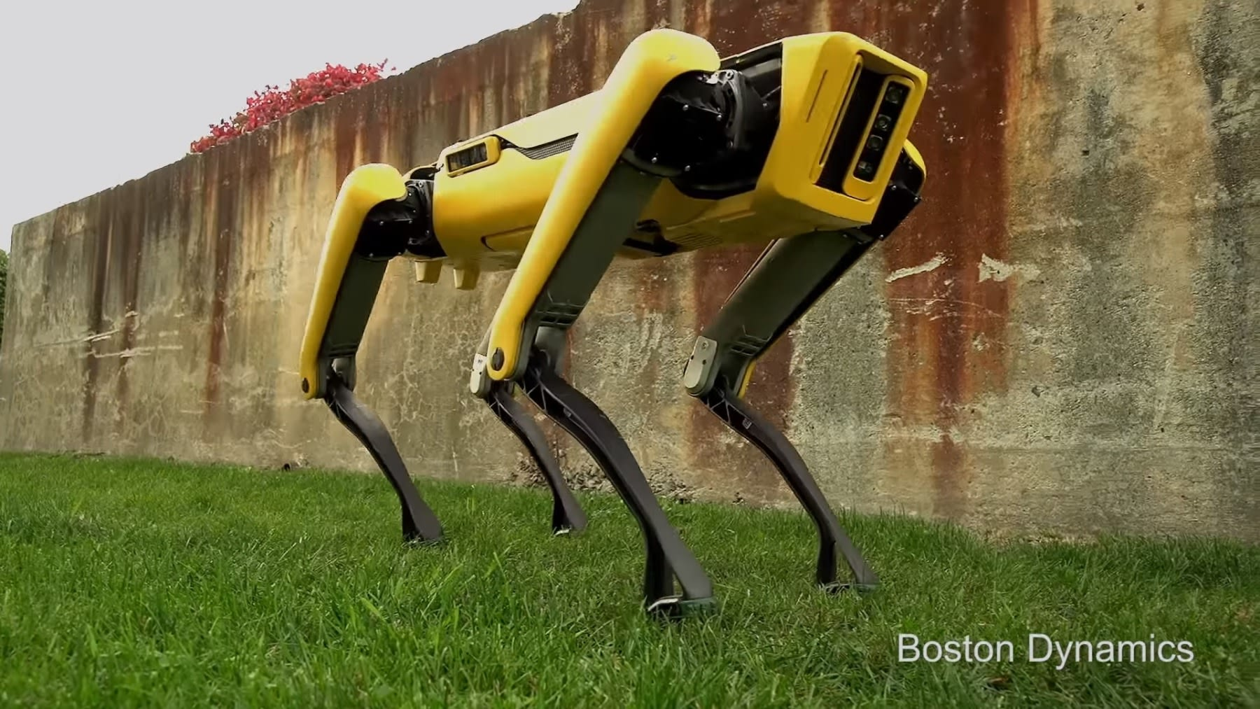 Boston Dynamics New Spotmini Robot Looks Ready For A Walk