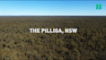 The Battle For The Pilliga, Australia's Largest Native Inland