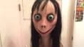 TDSB, Other Canadian School Boards Put Out Warnings About 'Momo