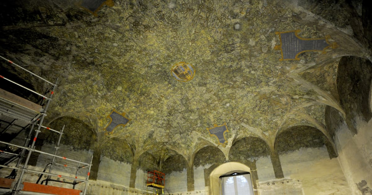 Leonardo Da Vinci Mural Discovered During Restoration Of Milan S Sforzesco Castle Pictures Huffpost Uk