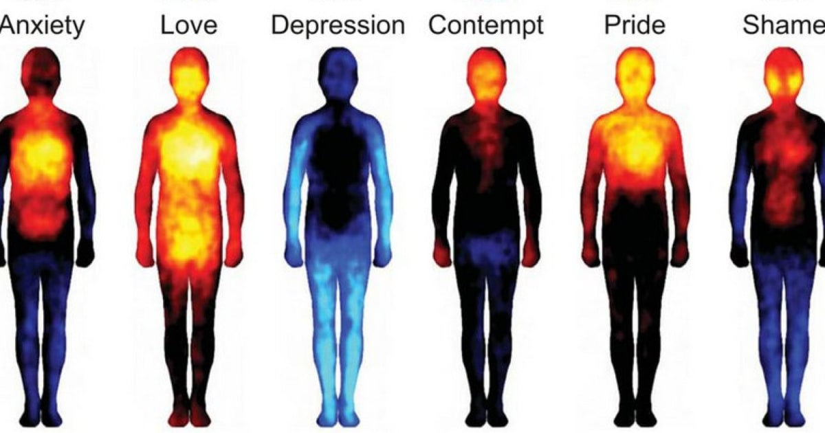 Look How Body Temperature Changes When Youre In Love Or Depressed
