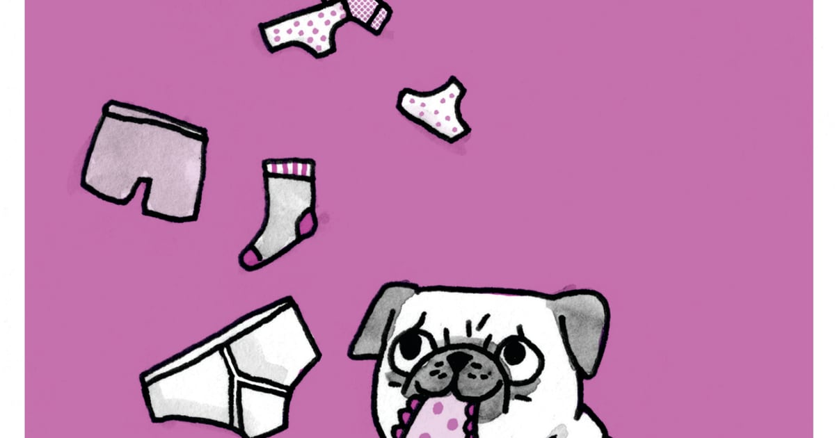 a pugs guide to dating husband dating while separated uk