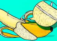 FYI, Those Annoying Strings On Bananas Are Called Phloem