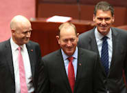 One Nation Sensationally Loses New Senator Fraser Anning On His First