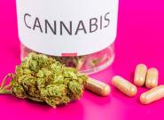 Le cannabis médical