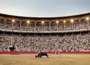 Pablo Iglesias propone un referéndum en España para decidir sobre los toros. ¿Tú cómo lo