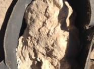 Un fromage contaminé vieux de 3300 ans découvert dans une tombe