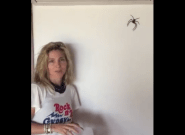Las mejores respuestas a este vídeo de Elsa Pataky cogiendo una araña gigante de su