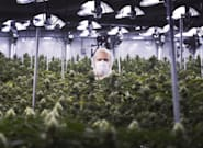 Aurora Cannabis Says It Has No Deal With Coca-Cola For Pot-Infused