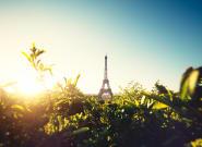 5 solutions pour que l'Europe soit une puissance verte et que la Terre ne devienne pas