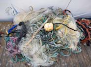 Area Of Plastic In The Great Pacific Garbage Patch Is More Than Twice The Size Of