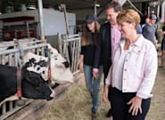 Liberals To Give Dairy Farmers $1.75B To Make Up For Trade Deal