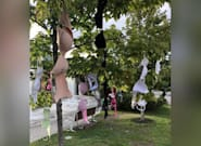 Ottawa Activists Hang Bras On Trees After Allegations Against Coun. Rick