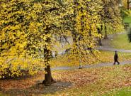 El otoño será cálido tras un verano marcado por dos intensas olas de