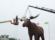 Mac The Moose Becomes Tallest Moose Statue Once