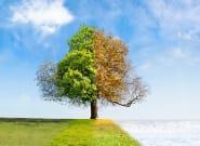 Οι «Τέσσερις εποχές» του Βιβάλντι αναθεωρούνται για την κλιματική