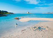 Εισιτήριο σε μια από τις πιο διάσημες παραλίες της Σαρδηνίας για να σωθεί από τον