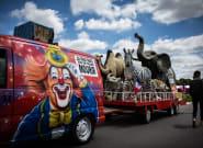 Les cirques avec des animaux sauvages interdits à Paris dès