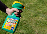 Roundup Weed-Killer Lawsuits Launched In