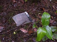 2 Men, 1 Woman Victims In Gabriola Island, B.C. Plane
