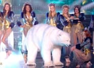 Miss France 2020: Le déhanché de l'ours blanc amuse tout le