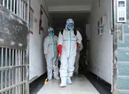 Face au nouveau virus en Chine, la Mongolie ferme sa