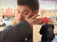 Denuncia por las teles el robo de una perra de asistencia a la que había entrenado y termina detenido por la