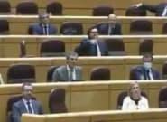 Los senadores del PP se levantan y se van indignados por el discurso de un miembro de Más