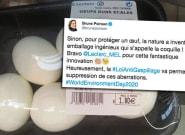 Brune Poirson dénonce le groupe Leclerc et ses emballages d'œufs