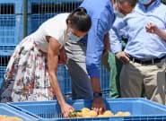 El 56% de los trabajadores españoles está en riesgo de contagio, el país más expuesto de toda la