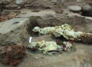 Des momies de lamas au Pérou offrent un témoignage historique des pratiques