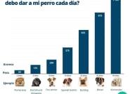 La fórmula para calcular cuánto pienso debe comer tu perro cada