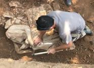 Αποκαλύφθηκε ναόσχημο μνημείο στην Παιανία με δυο υπέροχες γυναικείες μορφές του 4ου αιώνα