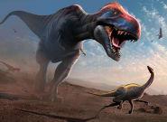 Même adolescents, les T-Rex évinçaient les espèces de dinosaures plus