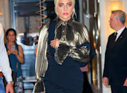 Lady Gaga's Dogs Safely Returned After Being Stolen At