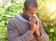 La saison des pollens et donc des allergies a