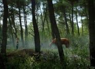 «Μικρά Όμορφα Άλογα»: Το ψυχολογικό θρίλερ του Μ. Κωνσταντάτου σε online